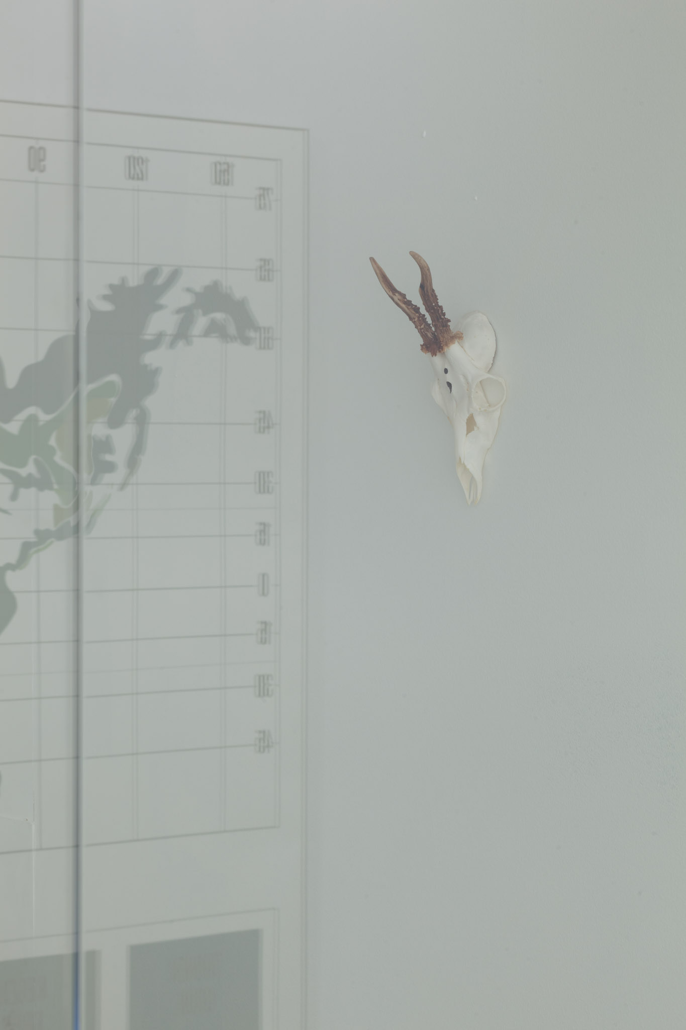 Nicolas Ceccaldi, Memory of Light, 2014, Deer Skull, Acrylic, 15 x 6,5 x 7 cm, 6 x 2.5 x 3 ins. Nuclear War: What's in it for you? Curated by Will Benedict , K P Brehmer | Nicolas Ceccaldi | Gaylen Gerber | Suzy Lake | Ludmila Seefried-Matějková