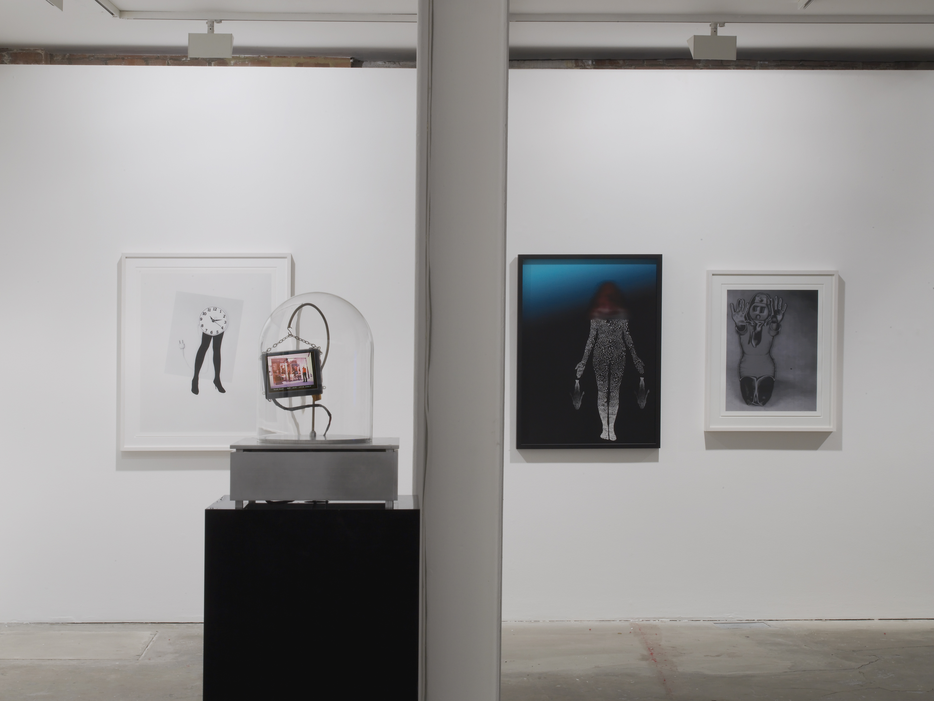 Installation view. Trans Genesis: Evaporations and Mutations , Lynn Hershman Leeson