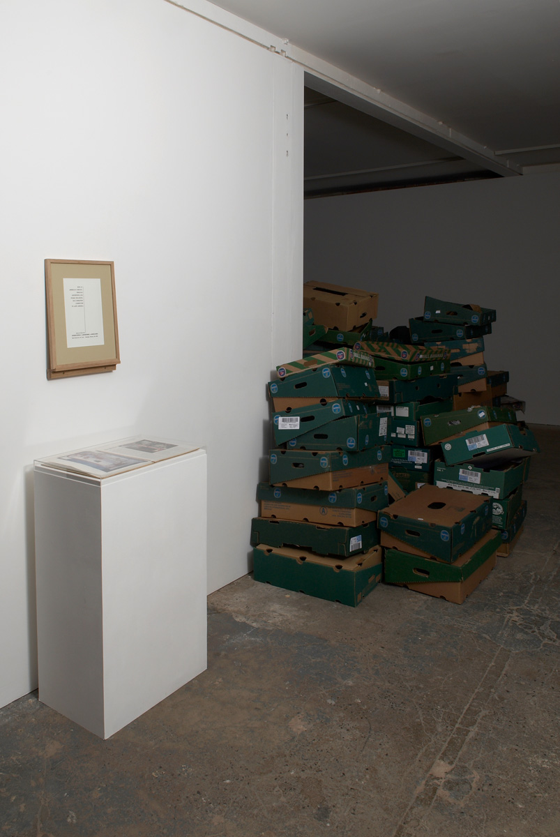 Installation view. Some Answers To A Few Questions About Bananas , Michael Stevenson