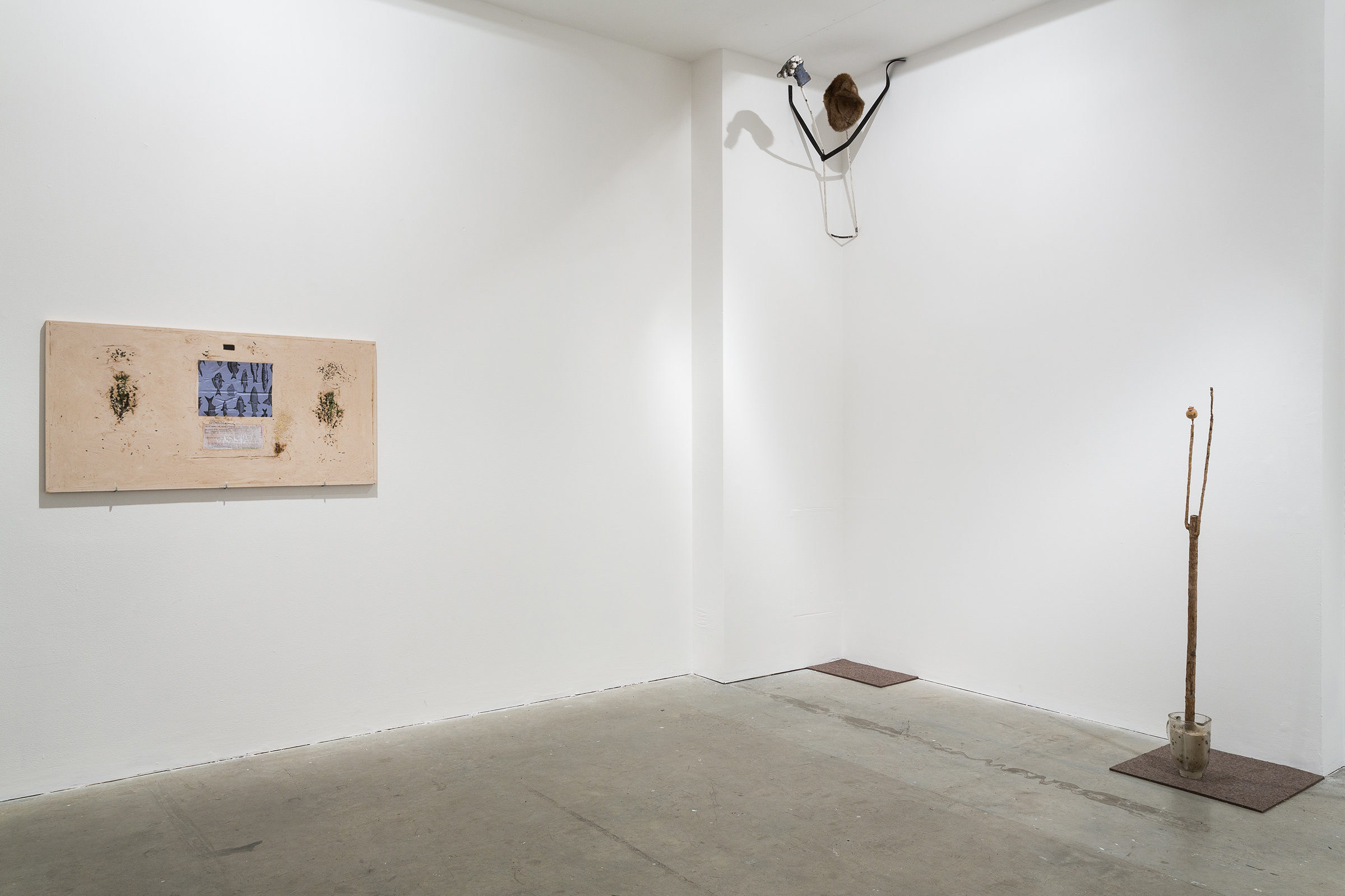 Now Panic, 2015, George Rippon, Vilma Gold, London, installation view. Now Panic , George Rippon