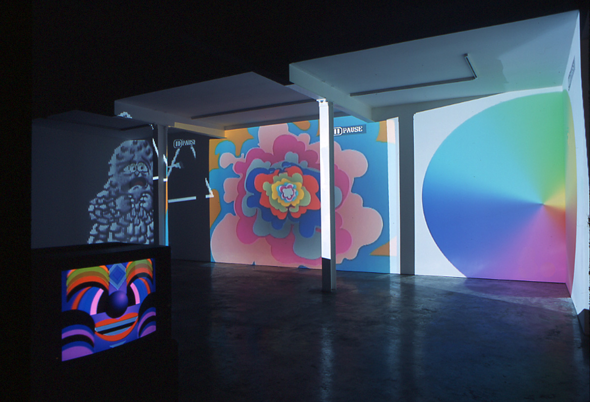 Installation view. Take It To The Net and Stefan Rinck , Seth Price, Paper Rad, Takeshi Murata, Paul Davis (Beige),  Michael Bell-Smith, Thomas Barbey, Jean Baptiste Bayle, and Stefan Rinck